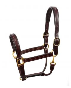 Perri's Fancy Stitched Halter