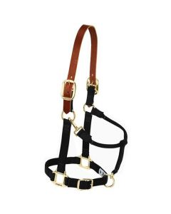 Weaver Original Nylon Halter w/ Leather Crown