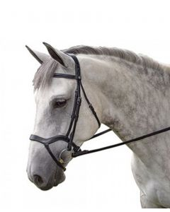 Toulouse Hybrid Dressage Bridle