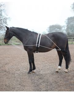 Shires Lunging Aid System