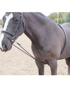 Soft Lunging Aid