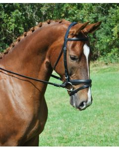 Red Barn Plain Raised Padded Travers Bridle with Flash