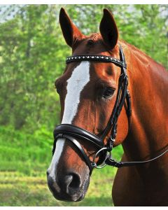 Cadence Dressage Bridle with Tapered Flash Crank Noseband & Crystal Browband