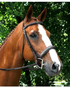 Red Barn Tryon Square Raised Padded Hunter Bridle