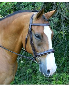 Ocala Tapered Fancy Raised Padded Bridle with Unicrown Headstall