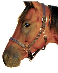 Triple Stitched Deluxe Track Halter