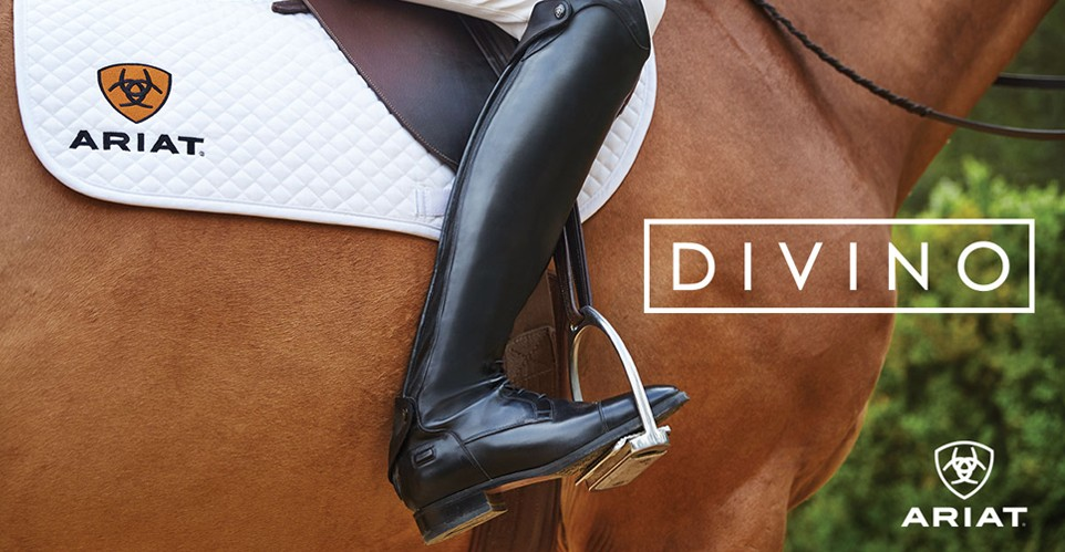 Ariat Divino Tall Equestrian Riding Boots